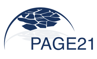 page21 logo